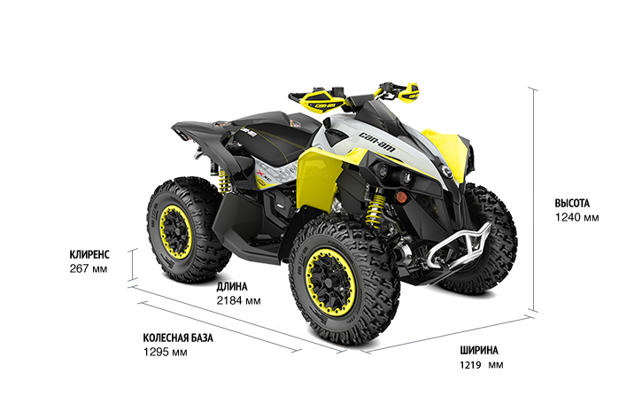BRP Can-Am Renegade 650 X XC (2020 м.г.)