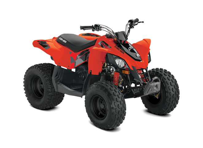 BRP Can-Am DS 90 (2017 м.г.)