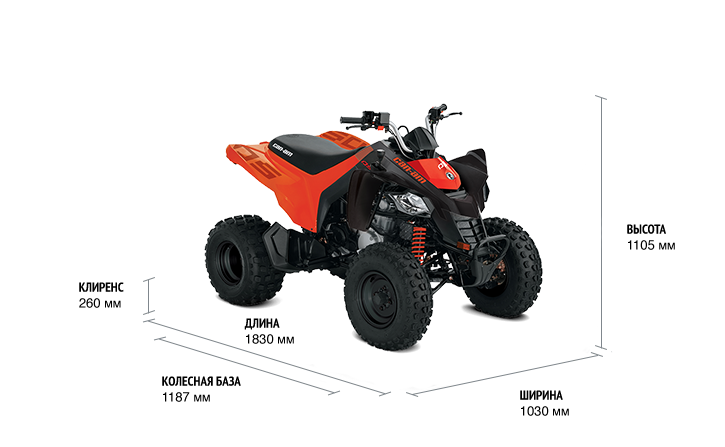 BRP Can-Am DS 250 (2020 м.г.)